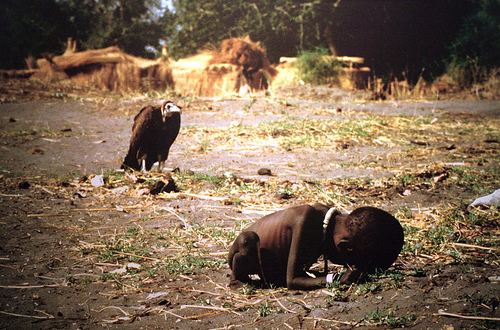 a study of famine in africa While much of east africa suffers from drought, it is conflict, rather than lack of rain, that has been the cause of famine in south sudan.